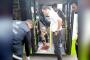 Çarptığı köpeği belediye otobüsüne alarak hayatını kurtardı