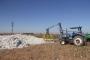 Urfa'da 3 çocuk pamukların arasında havasızlıktan öldü