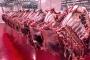 'İthal et fiyatları düşürmüyor, üreticiyi bitiriyor'