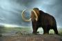 Bilim insanları tüylü mamut fosillerinin gizemini çözdü