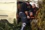 Suriyeli işçileri taşıyan araç devrildi: 2'si ağır, 7 yaralı