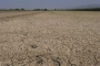 CHP'li Gürer: Tarım üreticisinin borçları ertelensin