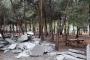 Samsun'da ormanlık alana 'dökülen' beton kaldırıldı